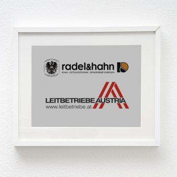 Leitbetriebe Austria Radel&Hahn 2013